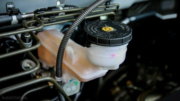 Brake Fluid Change Cost
